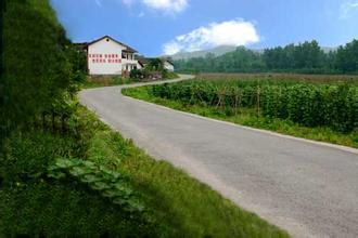 聊城:农村公路融资贷款规模达69亿图片