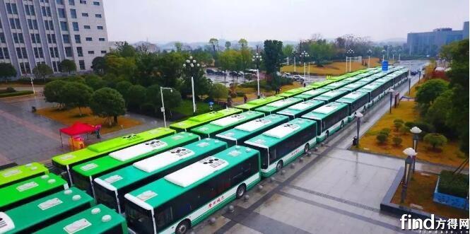 中车电动272辆纯电客车交付邵阳 (1)