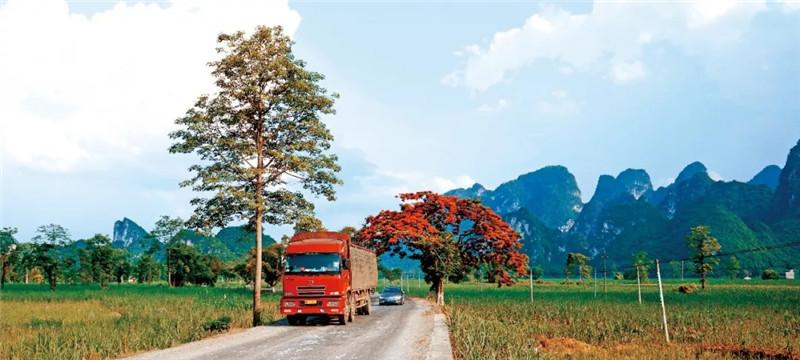 交通运输部印发深化道路运输驾驶员从业管理改革实施方案 (1)