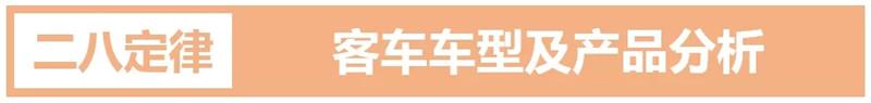 中国客车行业 (5)