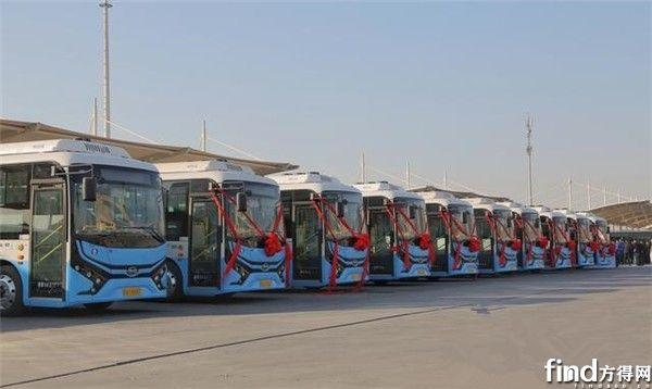 观察:350辆比亚迪电动公交近况如何