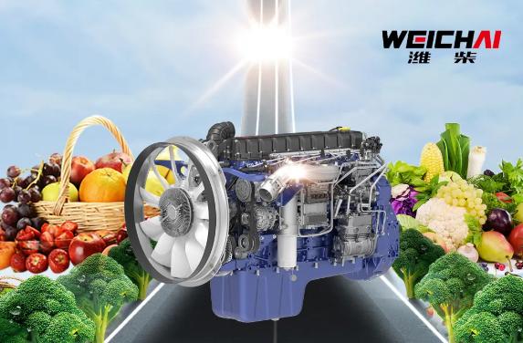 高效又可靠 WP10.5H助力绿通运输特别行
