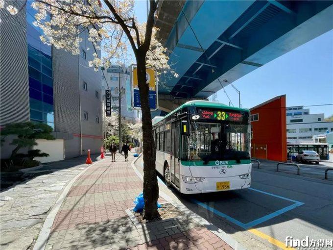 45辆金龙新能源客车进入韩国市场!